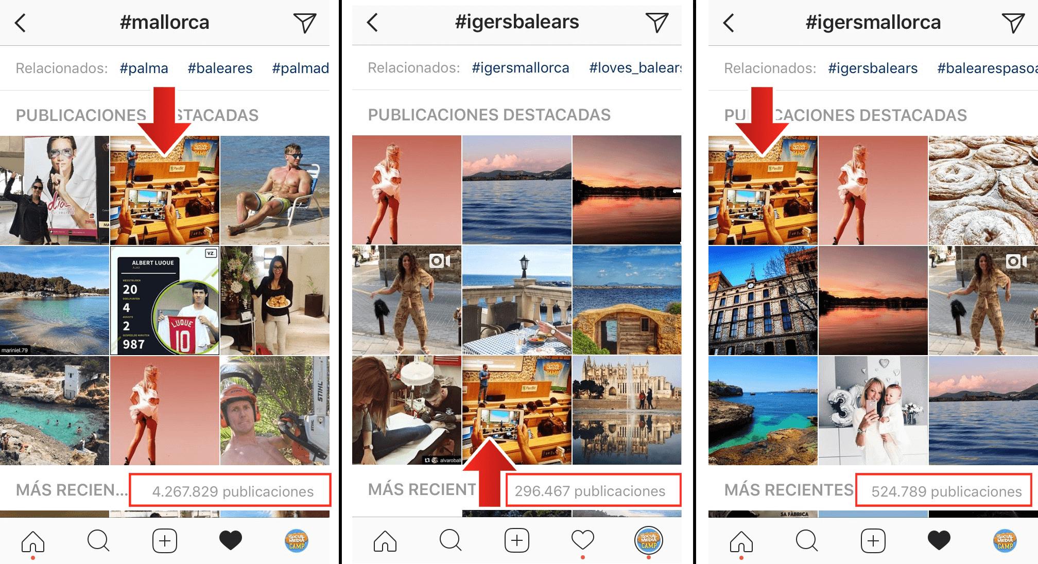 algoritmo instagram amel fernandez 2