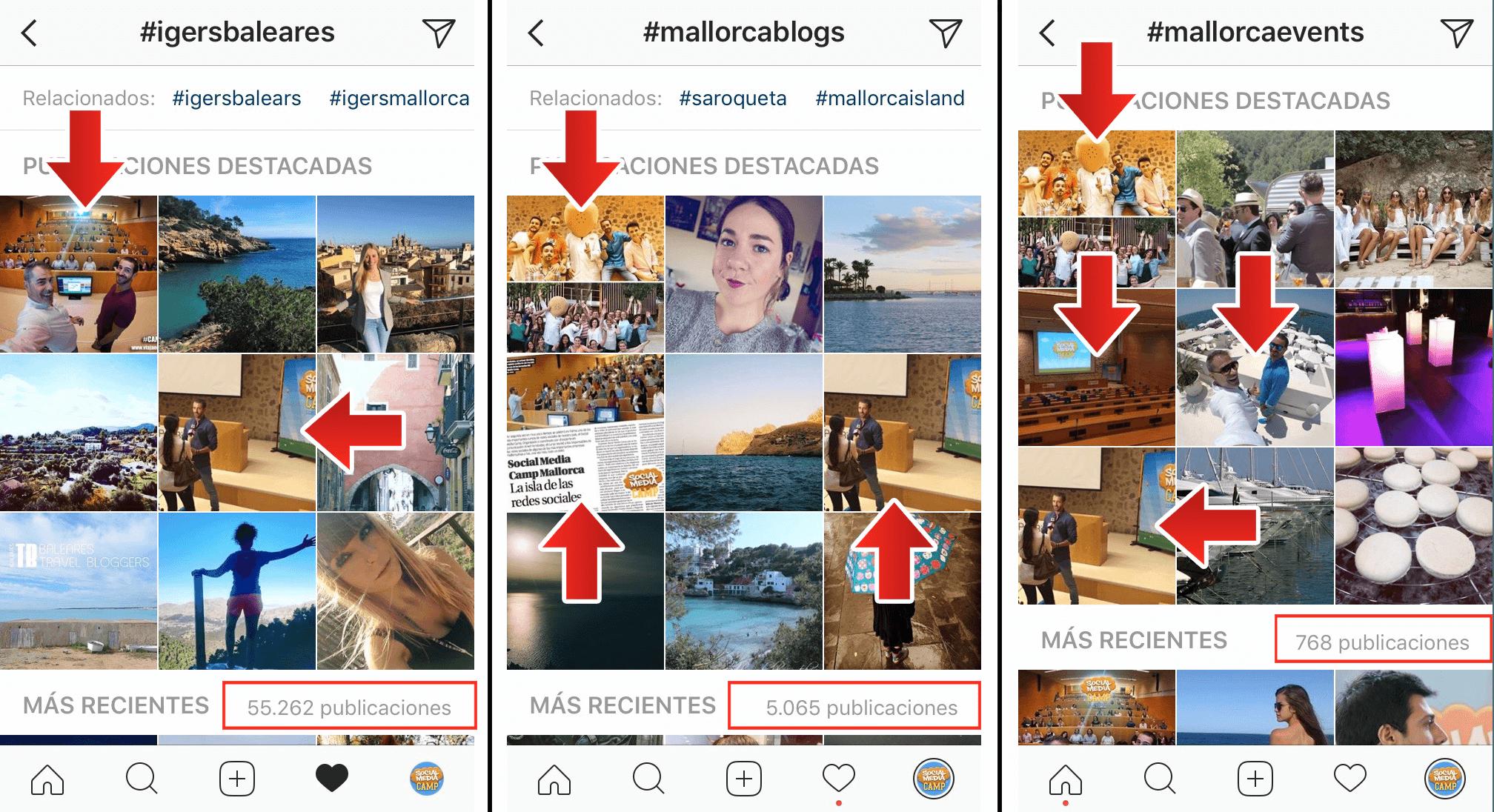 Algoritmo Instagram Amel Fernandez